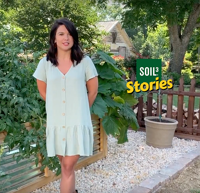 Soil3 Story: How a Backyard Vegetable Gardener Grew an Abundant Harvest [VIDEO] - featured image