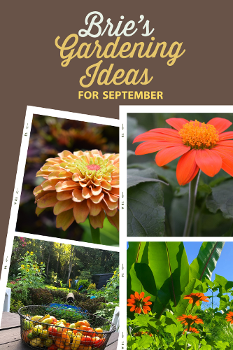 Brie September Gardening Ideas Pin-1
