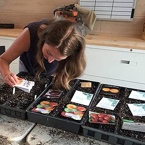 Plant Like a Pro with Brie's 2020 Planting Calendar - featured image