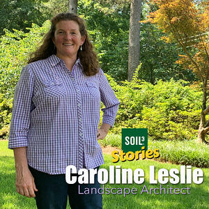 Soil3 Story:How a Landscape Architect Seeded Her Own Lawn with Soil3[VIDEO]