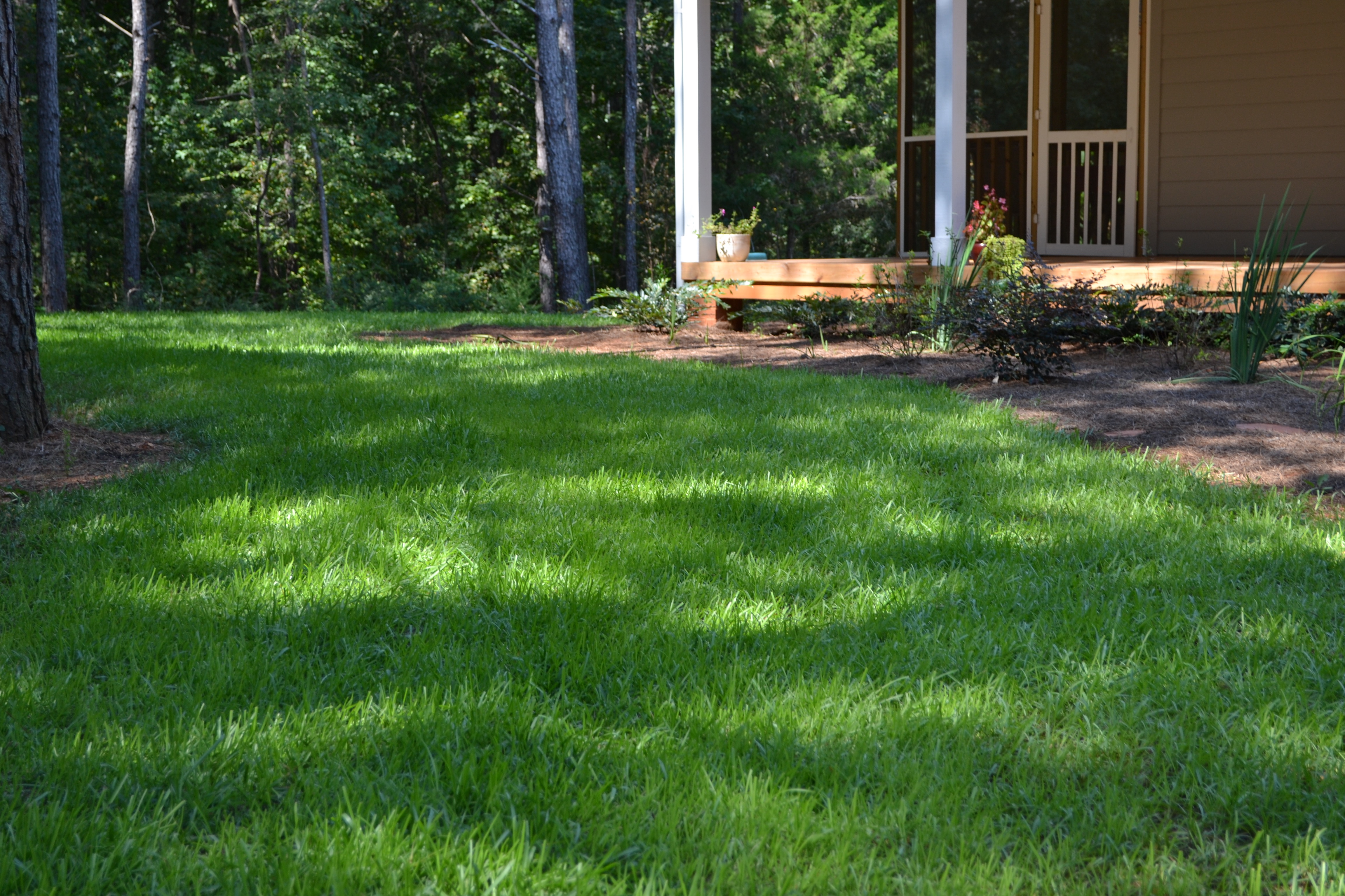 Seeding a New Lawn with Soil3 - featured image