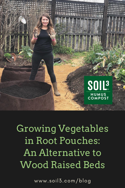 Growing Vegetables in Root Pouches_ An Alternative to Wood Raised Beds