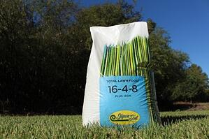 The Best Times to Apply Fertilizer - featured image