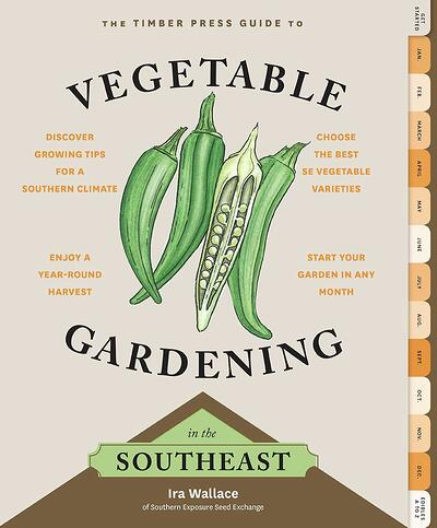 vegetable gardening in the south