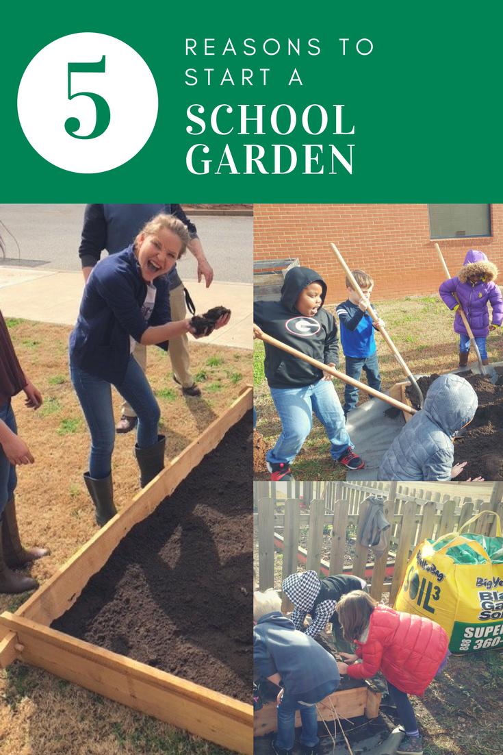 5 reasons to start a school garden.png
