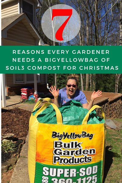 7 Reasons Every Gardener Needs A Bigyellowbag Of Soil3 Compost For