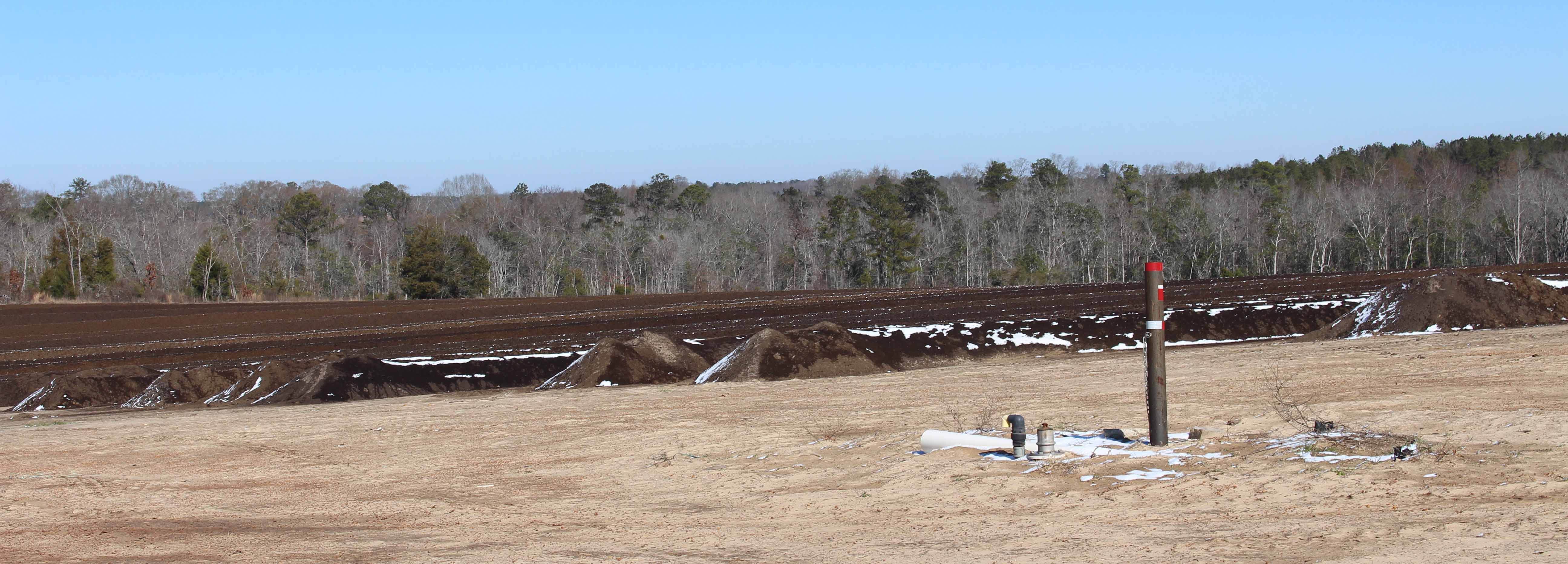 compost wind rows.jpg