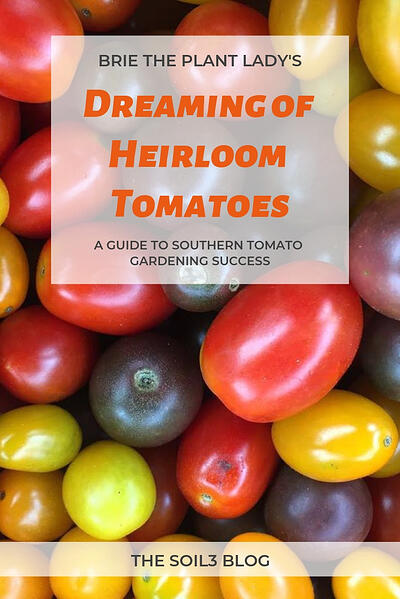 Dreaming of Heirloom Tomatoes blog pinnable graphic (1)