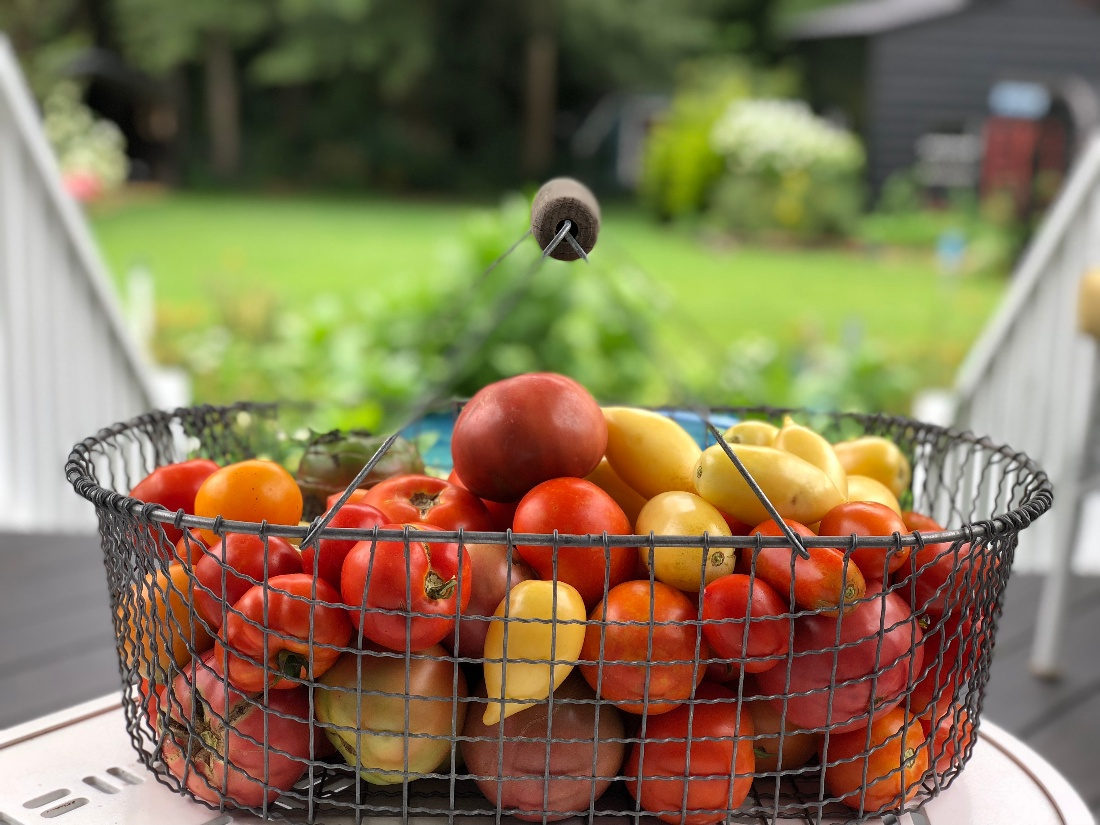 I'm Dreaming of Heirloom Tomatoes - featured image