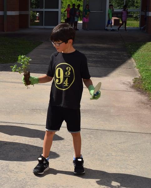 boy planting a school garden