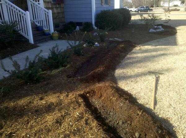 brie mulch bed before pic