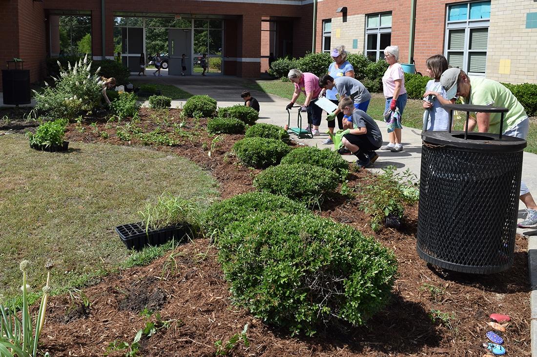 planning a school garden in landscaped areas
