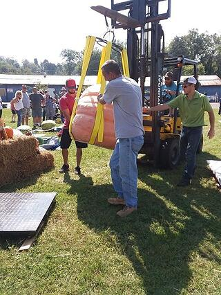 giant pumpkin transported with harness at the pumpkin festival weigh-off.jpg