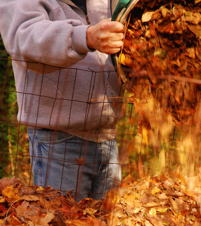 Joe Lampl adding fall leaves to his leaf corral