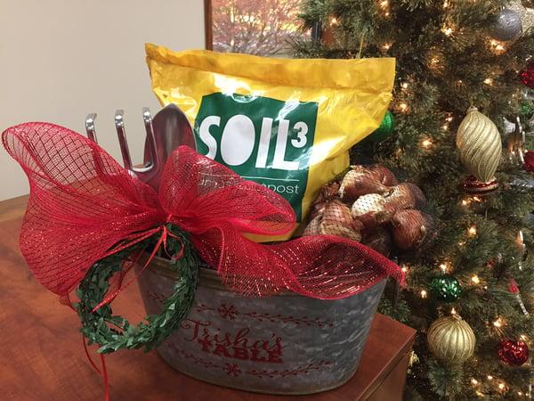 Oburg Soil3 gift entry 3
