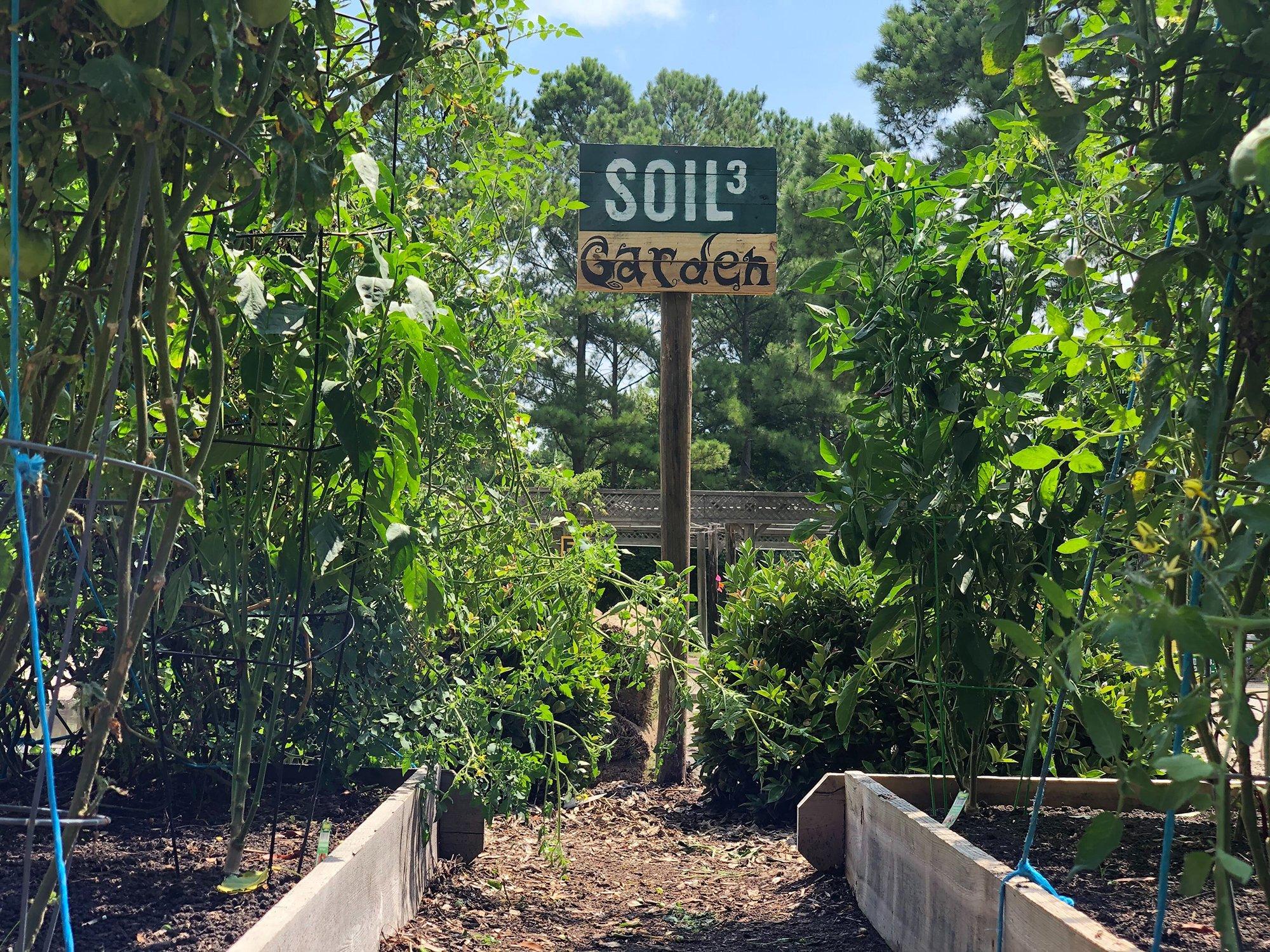 Soil3 Garden2