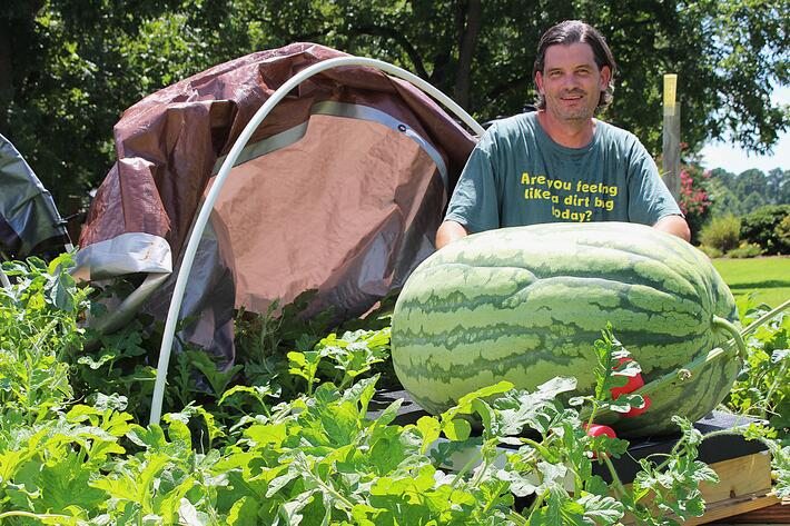 Giant Watermelons With A North Carolina