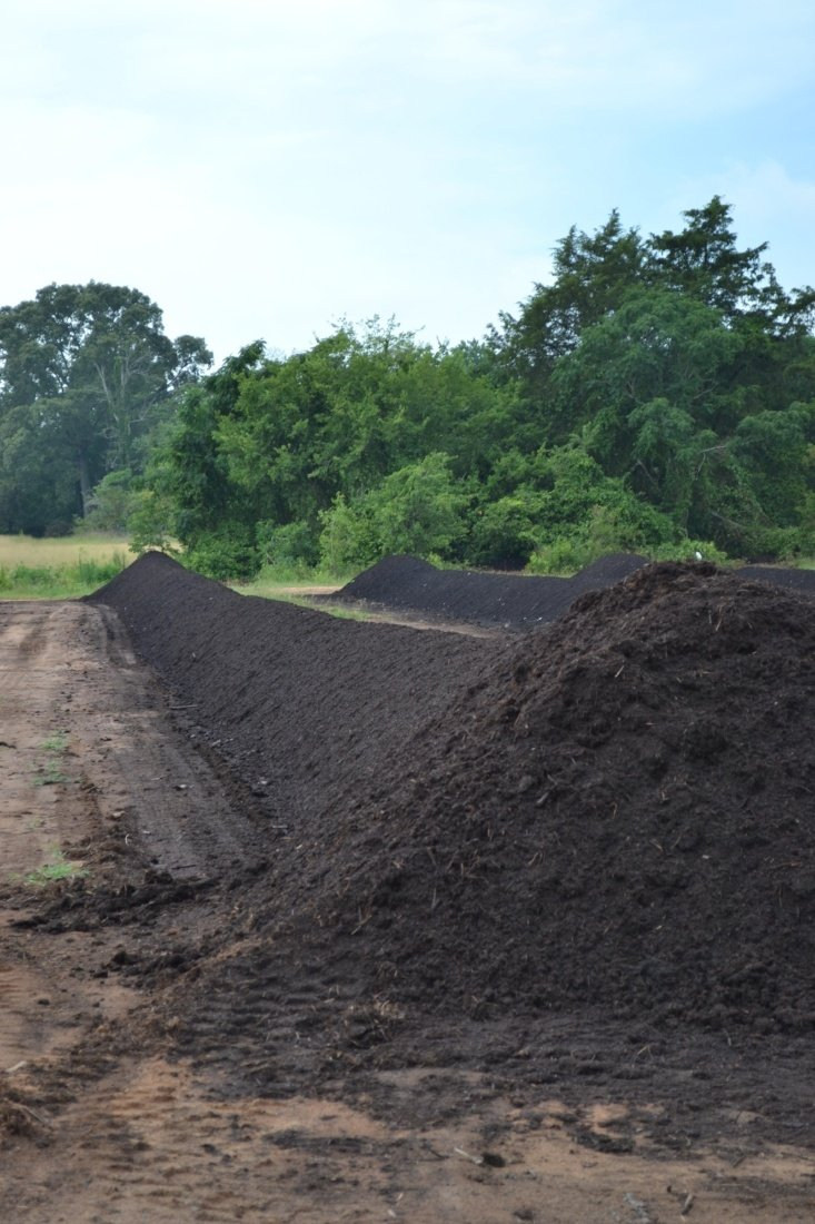 compost windrow of soil3 at compost facility