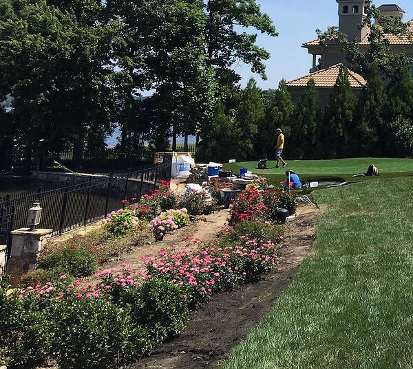 flower beds with Soil3