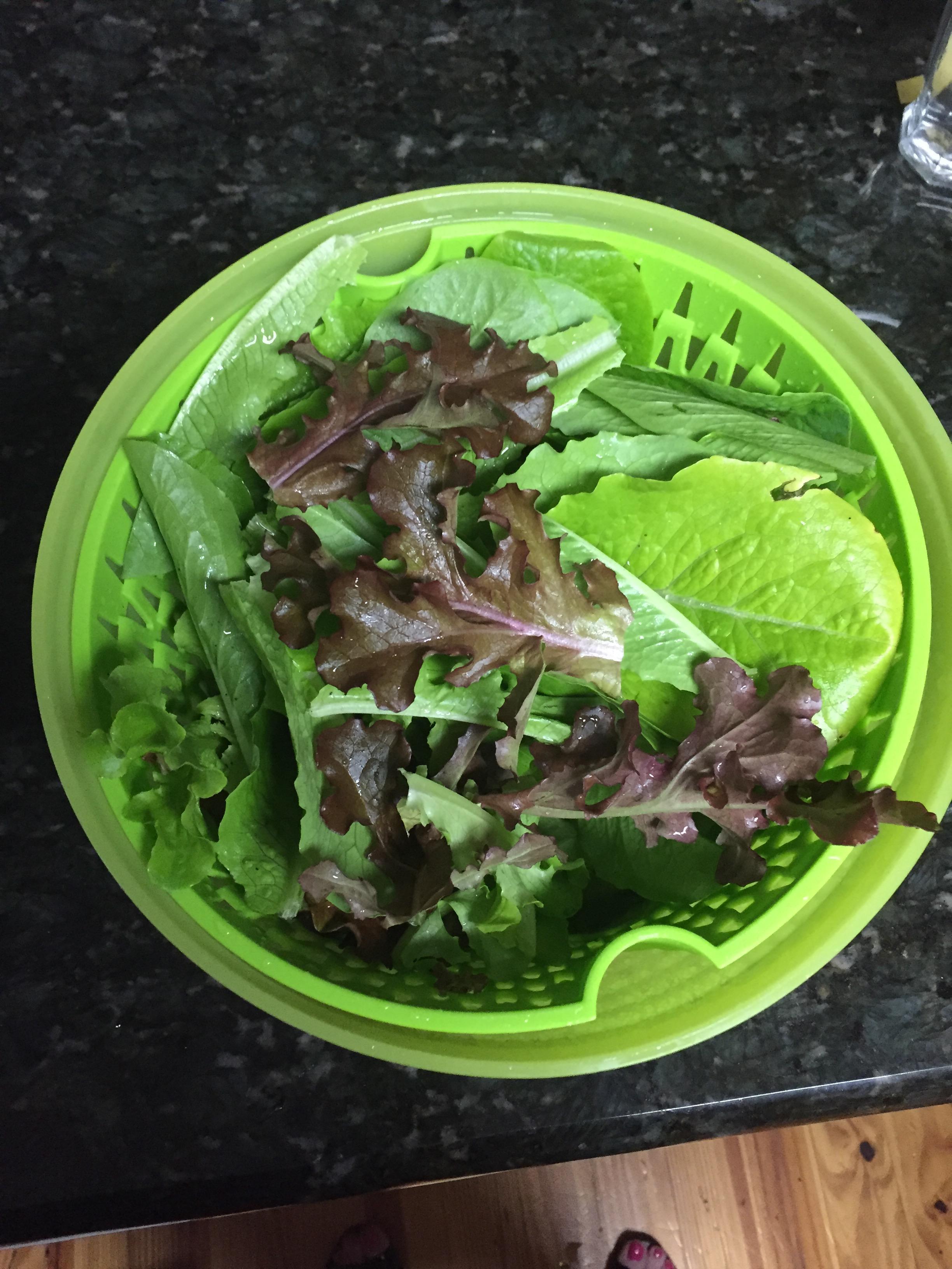 fresh lettuce from the garden