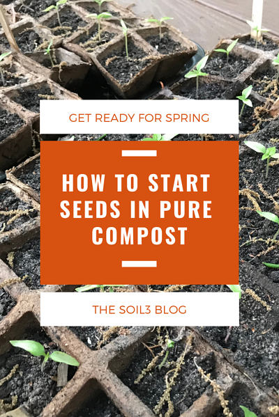 how to start seeds in compost