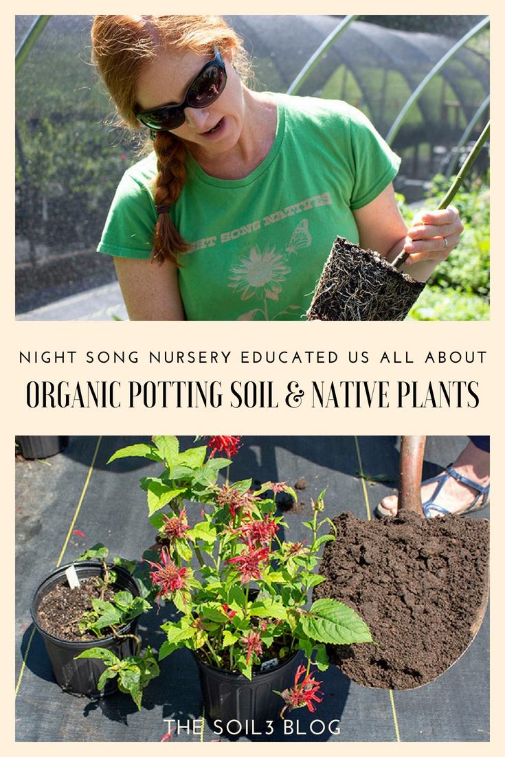 organic potting mix and native plants