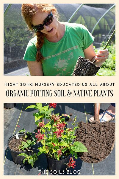 organic potting mix and native plants