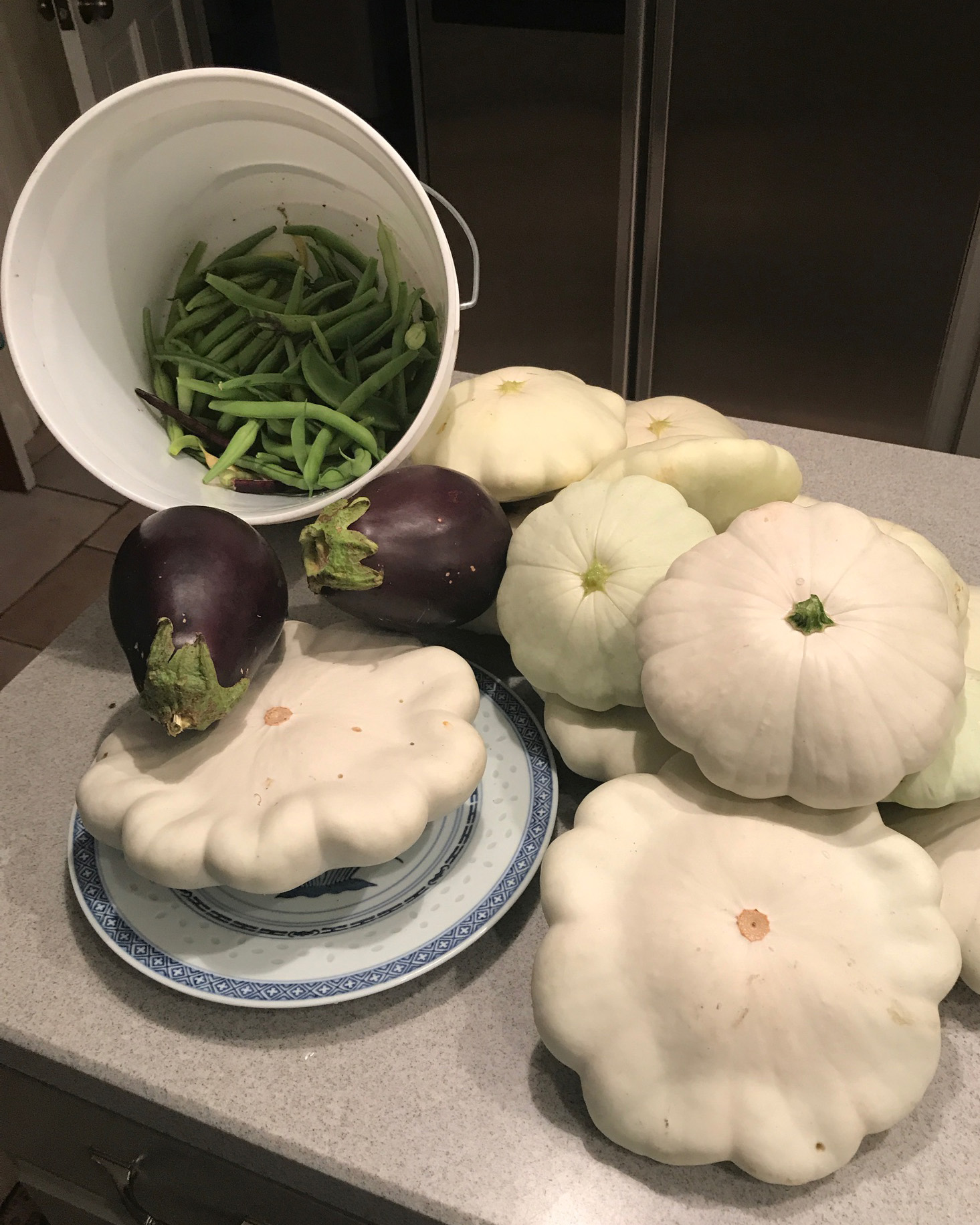 patty pan squash and green beans from Ross garden