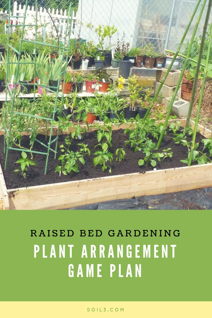 raised bed garden.png