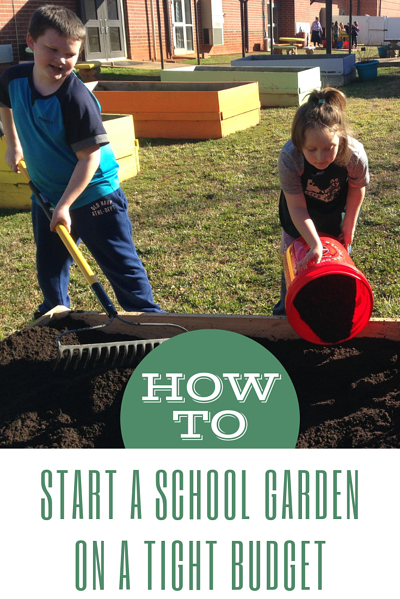 school garden on tight budget