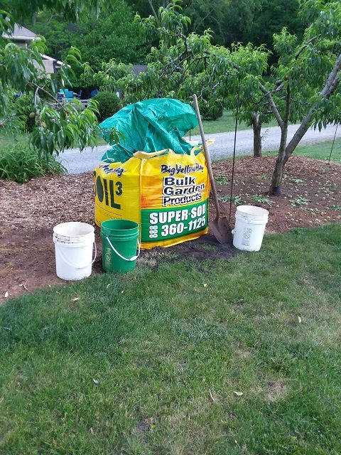 soil is everything for giant pumpkin grower who used soil3 compost this spring.jpg