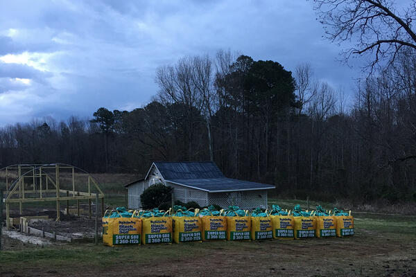 todd dawson soil3 bigyellowbag delivery March 2018