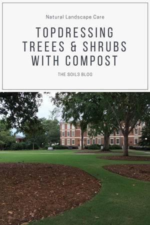 topdressing treees & shrubs with compost