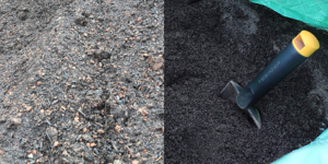 The Difference Between Topsoil and Compost - featured image
