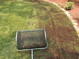 Topdressing Lawns with Soil3 Compost [video]