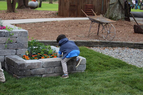 playing in the raised bed by AMG landscape copy