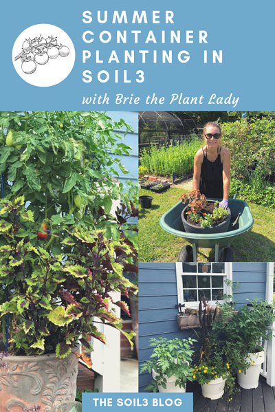 Soil3ContainerGardening_withBrieArthur