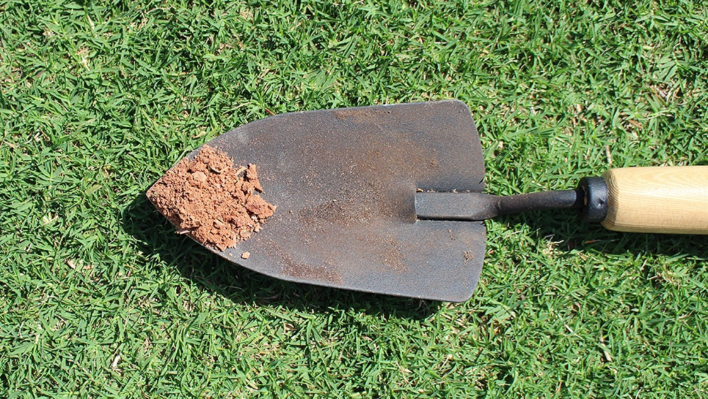 How To Conduct a Soil Test for Your Lawn (Video) - featured image