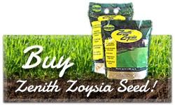 buy-seed-cta