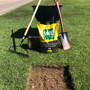 Patching an Existing Lawn with New Sod [VIDEO] - featured image