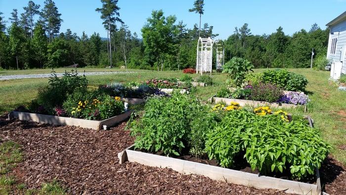 docs raised garden beds