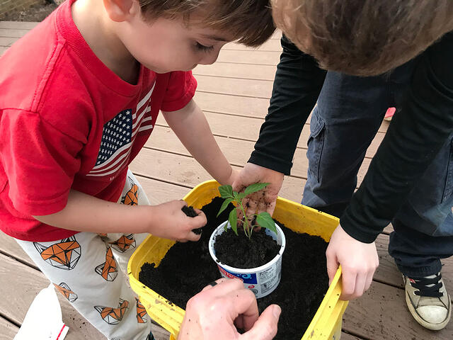 Gardening With Children - Teaching Ideas and Resources for Projects - featured image