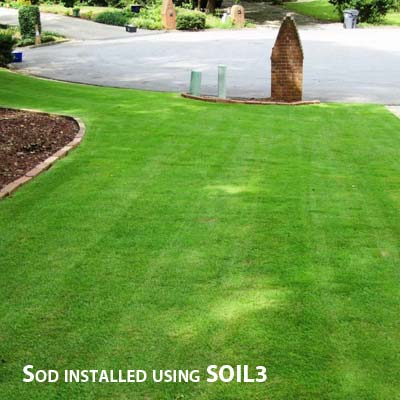 Lawn sodded with SOIL3