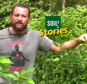 Soil3 Story: Pepper Guru Grows Thousands of Peppers with Soil3 [VIDEO]