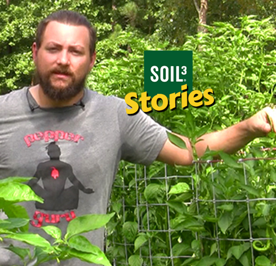 Soil3 Story: Pepper Guru Grows Thousands of Peppers with Soil3 [VIDEO] - featured image