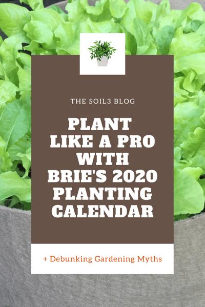 plant like pro (1)
