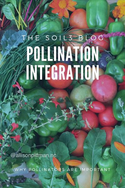 pollination integration
