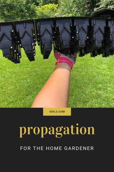 propogation