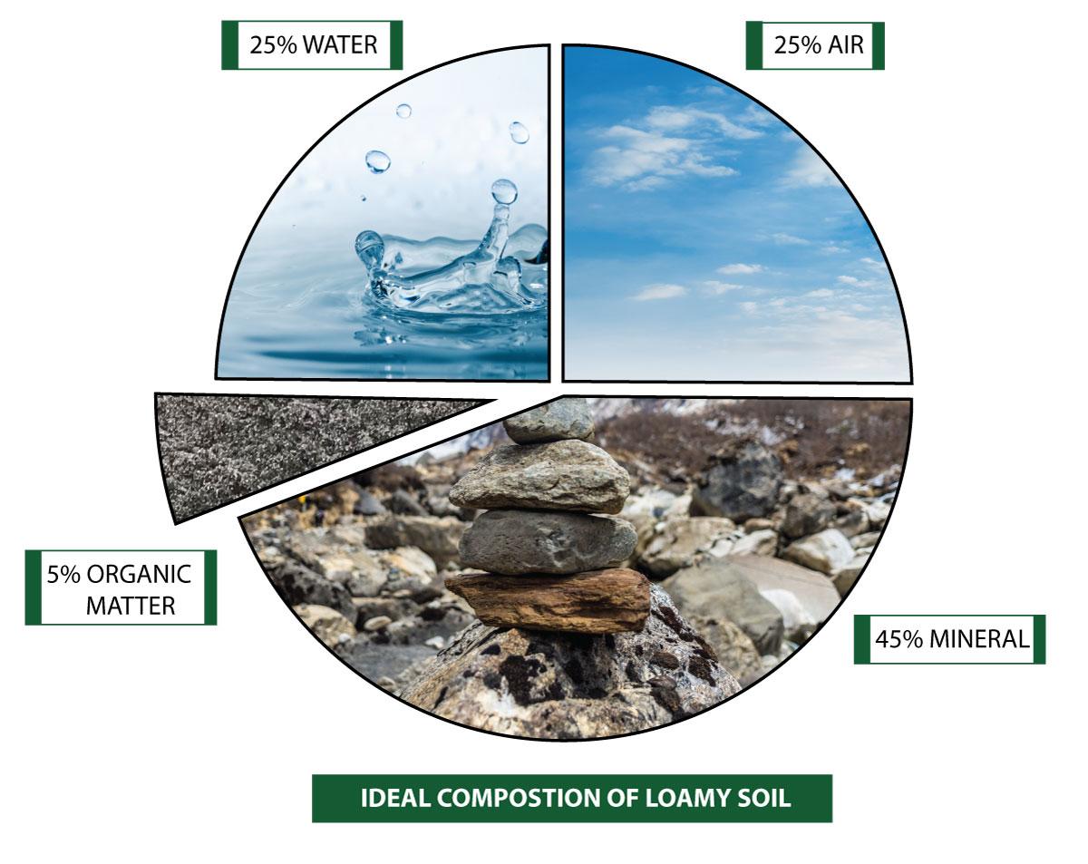 soil-food-web-chart3