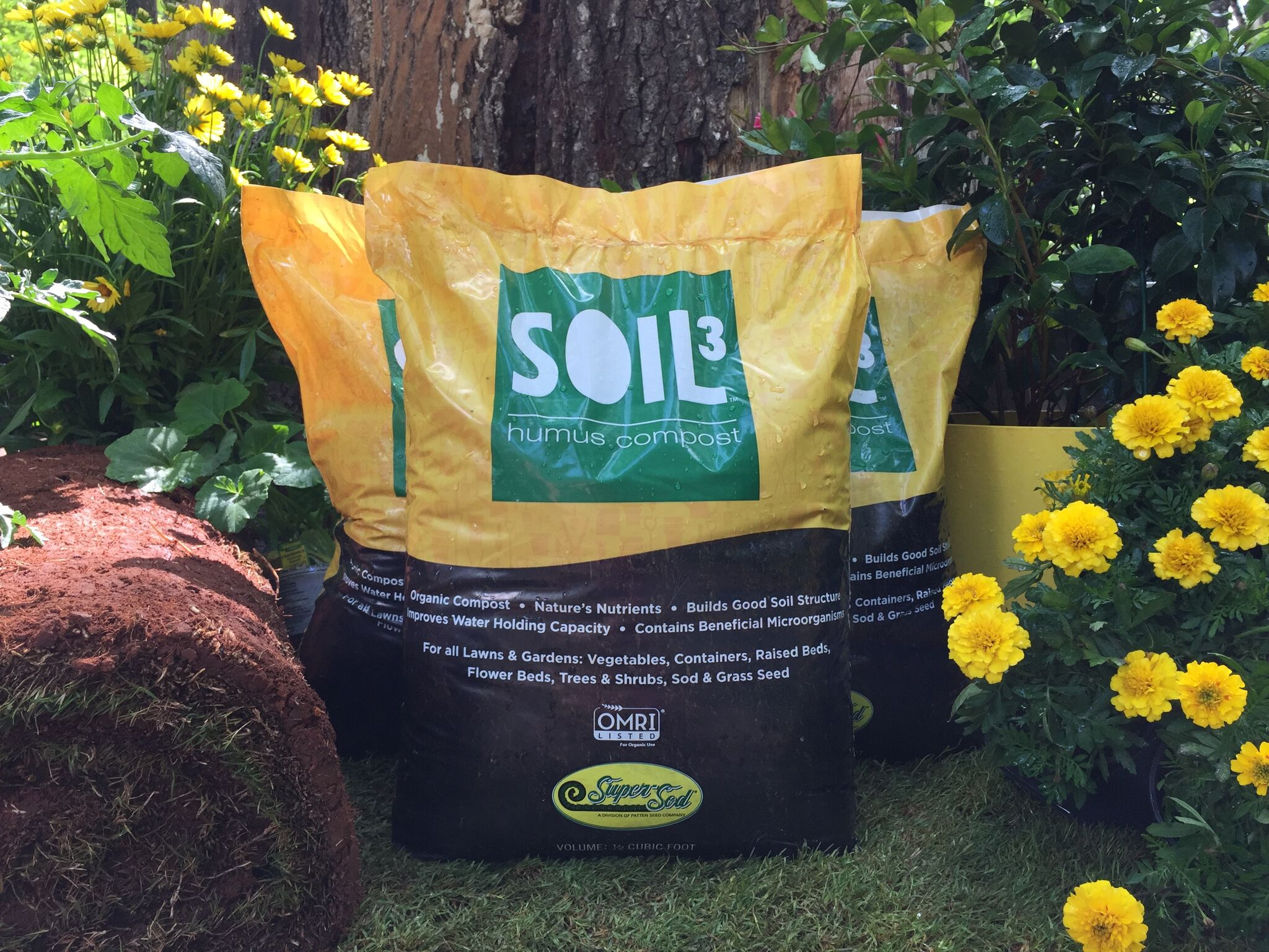 Seedbed preparation using half cubic bag of Soil<sup>3</sup>